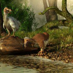 Anniversaire à thème: dinosaures
